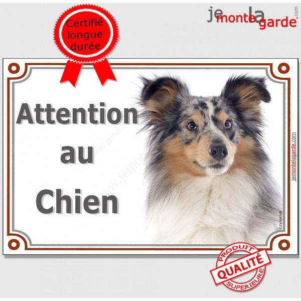 Bergers des Shetlands Merle Tête, Plaque portail Attention au Chien, panneau affiche pancarte photo race