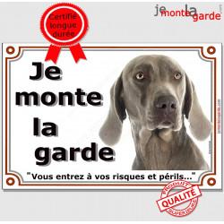 Braque de Weimar Tête, Plaque portail Je Monte la Garde, panneau affiche pancarte, risques périls attention au chien