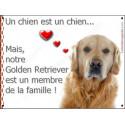 """Golden Retriever Tête, plaque """"Membre de la Famille"""" 24 cm LOVE A"""