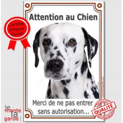 """Dalmatien Tête, plaque """"Attention au Chien"""" portail 24 cm Vlux A"""