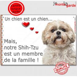 """Shih-Tzu fauve beige blanc Tête, plaque """"Membre de la Famille"""" intérieur extérieur panneau pancarte affiche photo"""