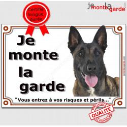 """Berger Belge Malinois Tête, plaque """"Je Monte la Garde, risques et périls"""" panneau pancarte photo"""