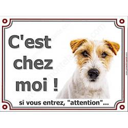Jack Russell poils Durs Tête, Plaque portail C'est Chez Moi ! panneau affiche pancarte, attention chien