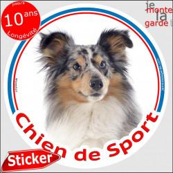 """Sticker rond """"Chien de Sport"""" 15 cm, Berger Shetland bleu merle Tête, intérieur Extérieur sheltie Adhésif agility club photo"""