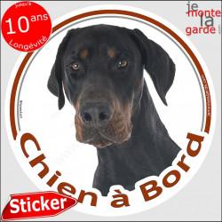"Dobermann, sticker ""Chien à Bord"" 14 cm"
