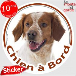 """Epagneul Breton, sticker """"Chien à Bord"""" 14 cm"""