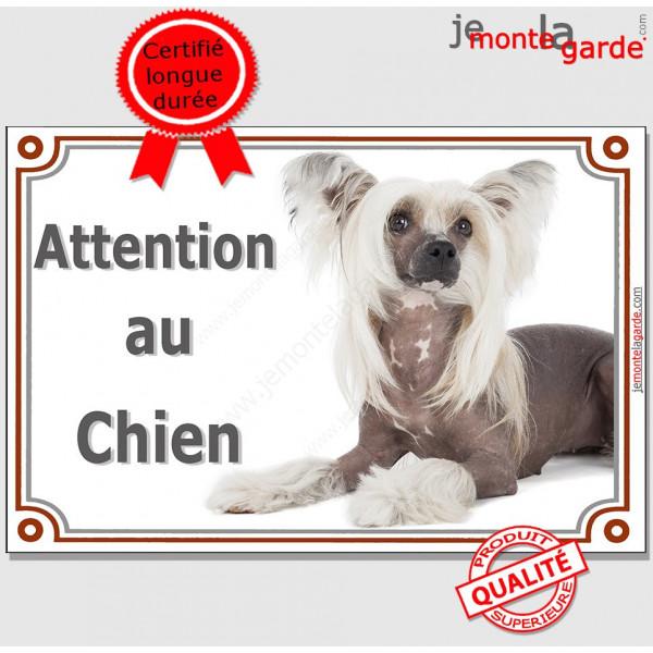 """Chien Nu Chinois à Crête, Plaque portail """"Attention au Chien"""" panneau affiche pancarte photo"""