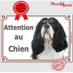 """Cavalier King Charles tricolore Tête, plaque portail """"Attention au Chien"""" pancarte panneau 3 couleurs photo"""