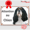 """Cavalier King Charles, plaque """"Attention au Chien"""" 2 taille Luxe C"""
