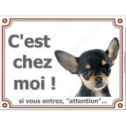 Chihuahua Noir et Feu poils courts tête, Plaque portail C'est Chez Moi ! panneau affiche pancarte, attention chien