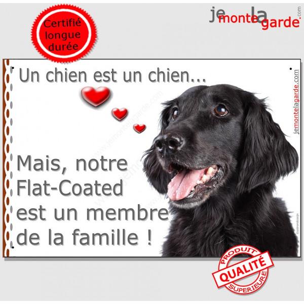 Flat Coated Retriever, Plaque Portail un chien est un chien, membre de la famille, pancarte, affiche panneau retriver photo
