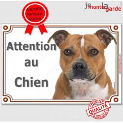 """Staffie Fauve lisse blanche, plaque portail """"Attention au Chien"""" pancarte panneau staffy marron photo"""