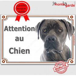 """Cane Corso gris, pancarte portail """"Attention au Chien"""" Plaque photo race, Panneau Italiano bleu affiche"""