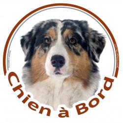 """Sticker autocollant rond """"Chien à Bord"""" 15 cm, Berger Australien Bleu Merle Tête adhésif"""