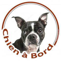 """Sticker autocollant rond """"Chien à Bord"""" 15 cm, Boston Terrier Tête adhésif voiture photo"""