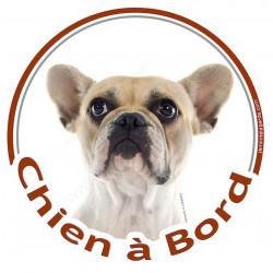 """Sticker autocollant rond """"Chien à Bord"""" 15 cm, Bouledogue Français Caille blanc et Fauve Tête adhésifs photo"""