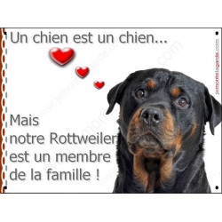 Plaque 2 Tailles LOVE Membre de la Famille, Rottweiler tête