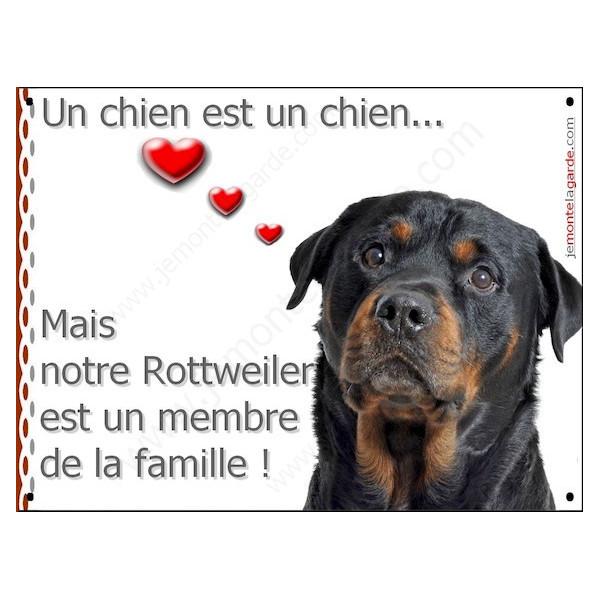 Rottweiler Tête, Plaque Portail un chien est un chien, membre de la famille, pancarte, affiche panneau