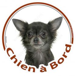 """Sticker autocollant rond """"Chien à Bord"""" 15 cm, Chihuahua Gris à poils longs Tête, adhésif vitre voiture"""