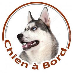 """Sticker autocollant rond """"Chien à Bord"""" 15 cm, Husky gris et blanc avec yeux bleus Tête, adhésif vitre voiture"""