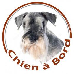 "Schnauzer, sticker ""Chien à Bord"" 15 cm - 3 ans"