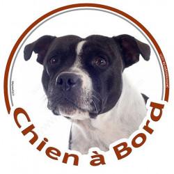 """Sticker rond """"Chien à Bord"""" 15 cm, Staffie blanc et noir Tête"""