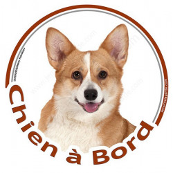 "Welsh Corgi, sticker ""Chien à Bord"" 15 cm"
