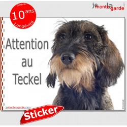 """Teckel sanglier à poils durs, sticker autocollant """"Attention au Chien"""", adhésif photo panneau pancarte affiche"""