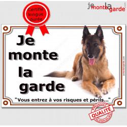 Berger Belge Tervueren, Plaque portail Je Monte la Garde, pancarte affiche panneau, risques et périls attention au chien
