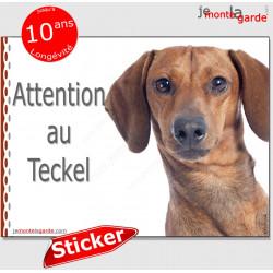"""Teckel, autocollant """"Attention au Chien"""" 16 x 12 cm"""