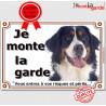 """Bouvier Bernois Tête, plaque """"Je Monte la Garde"""" 2 tailles LUX B"""
