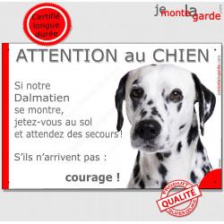 """Dalmatien tête, plaque portail humour """"Attention au Chien, Jetez Vous au Sol"""" pancarte photo panneau drôle"""