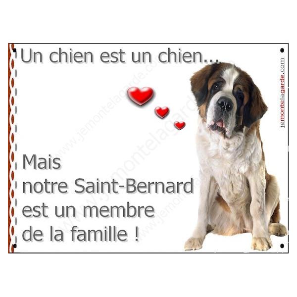 Plaque 16 cm LOVE, Membre de la Famille, St-Bernard Tête