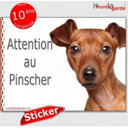 """Pinscher fauve marron, panneau autocollant """"Attention au Chien"""" photo, sticker pancarte adhésif"""