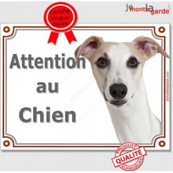 """Lévrier Whippet fauve, plaque portail """"Attention au Chien"""" panneau pancarte photo"""