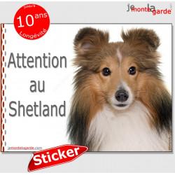 """Berger Shetland fauve, panneau autocollant """"Attention au Chien"""" pancarte sticker photo adhésif"""