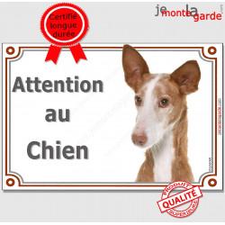 """Podenco d'Ibiza tête, plaque portail """"Attention au Chien"""" pancarte panneau chien garenne baléares poteau"""