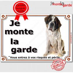 Saint-Bernard Assis, Plaque portail Je Monte la Garde, panneau affiche pancarte, risques périls St-Bernard attention au chien