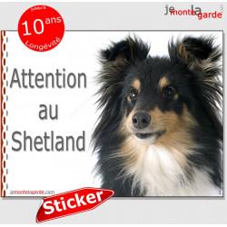 """Berger Shetland tricolore, panneau autocollant """"Attention au Chien"""" pancarte sticker photo adhésif"""