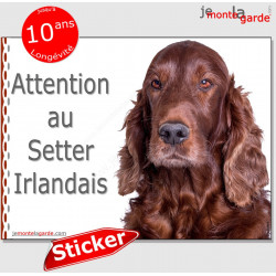 "Setter Irlandais, panneau autocollant ""Attention au Chien"", pancarte sticker photo adhésif"
