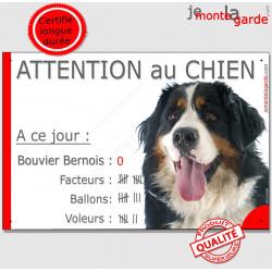 """Bouvier Bernois Tête, plaque """"Nombre de Voleurs, ballons, facteurs"""" 24 cm NBR"""