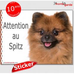 """Spitz Loulou fauve orange, panneau autocollant """"Attention au Chien"""" Pancarte photo sticker adhésif"""