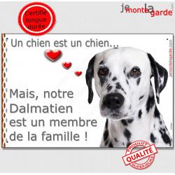 Dalmatien Tête, Plaque Portail un chien est un chien, membre de la famille, pancarte, affiche panneau photo