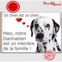 """Dalmatien Tête, plaque """"Membre de la Famille"""" 24 cm LOVE"""