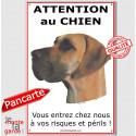 """Danois Fauve, plaque portail """"Attention au Chien"""" 24 cm ECO"""