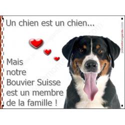 Bouvier Suisse Tête, Plaque Portail un chien est un chien, membre de la famille, pancarte, affiche panneau