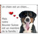 Plaque 16 cm LOVE Membre de la Famille, Bouvier Suisse Tête