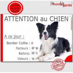 "Border Collie, plaque ""Nombre de Voleurs, ballons, facteurs, Attention au Chien"" humour 24 cm"