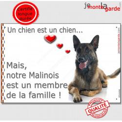 """Malinois couché, plaque """"Membre de la Famille"""" 24 cm LOVE"""
