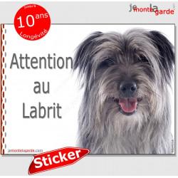 """Berger des Pyrénées gris bleu, panneau autocollant """"Attention au Chien"""" pancarte sticker photo adhésif Labrit"""